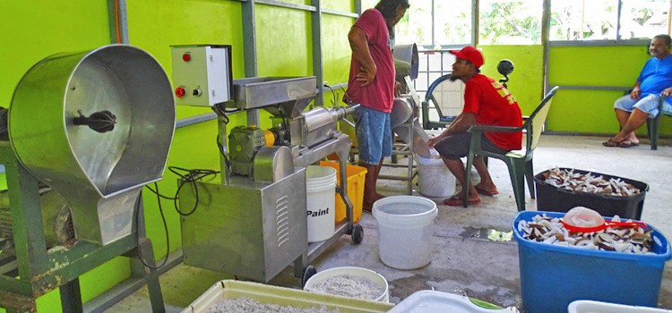 Namdik residents economically active
