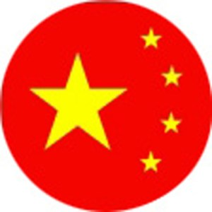 Chinese Rifles