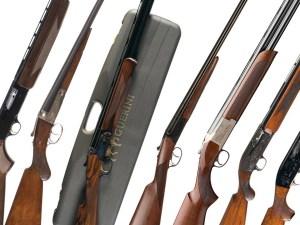 All Shotguns