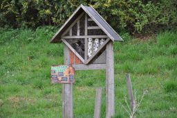 insecthotel