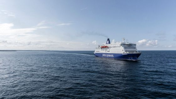 dfds 1