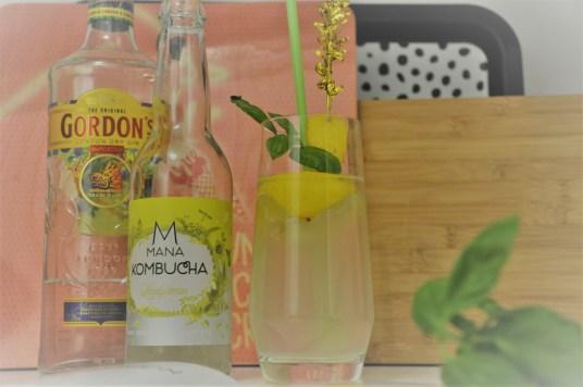 mana kombucha cocktail (5)