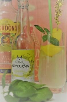 mana kombucha cocktail (7)