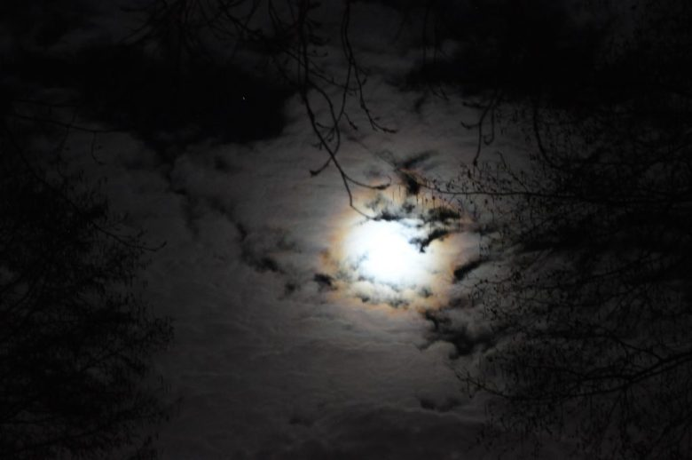 volle maan bodegraven