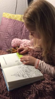 wombat en vos leesboek