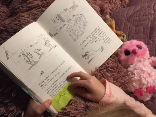 wombat en vos lezen