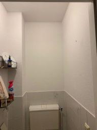 toilet metamorfose verfmaatjes