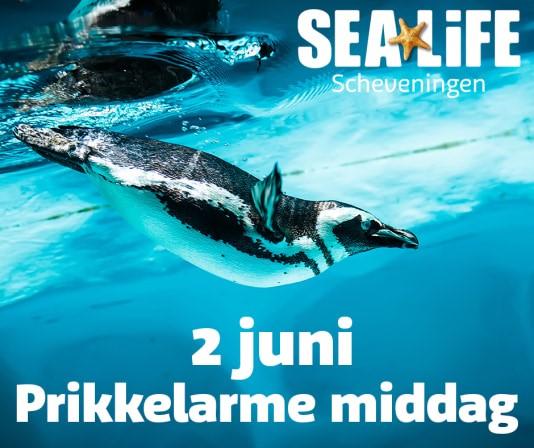 prikkelarm sealife