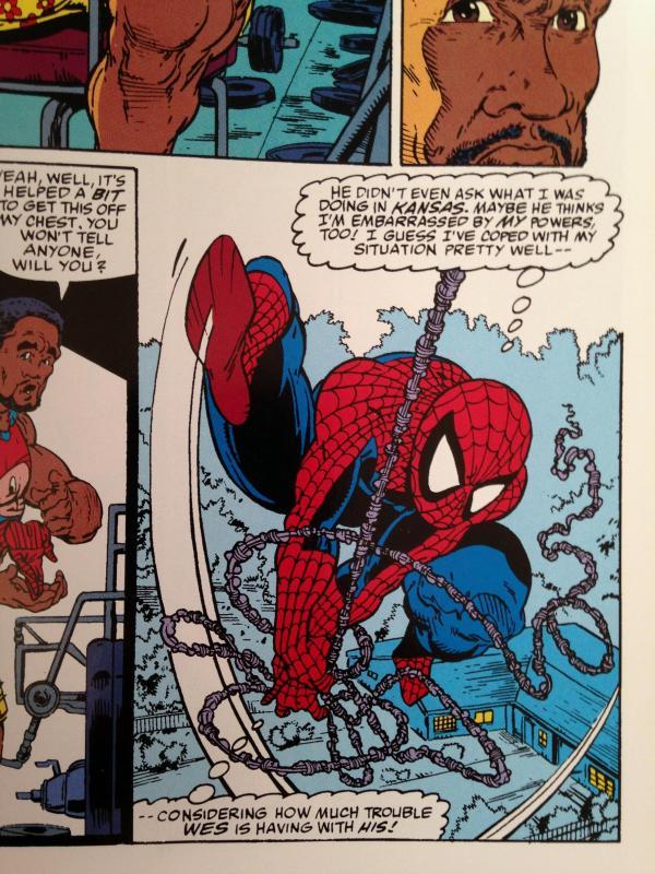 Todd McFarlane Spider-Man Spider