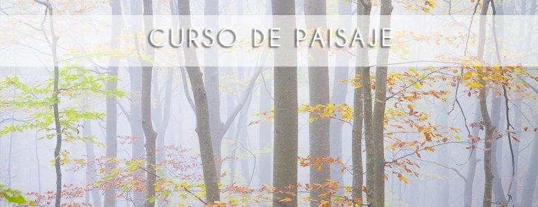banner_CursPaisatge_ro