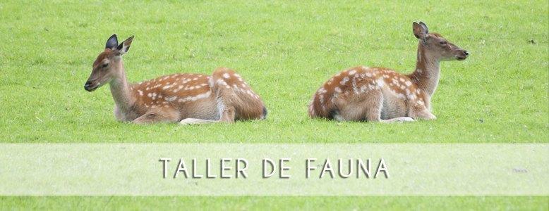 banner_TallerFauna_ro