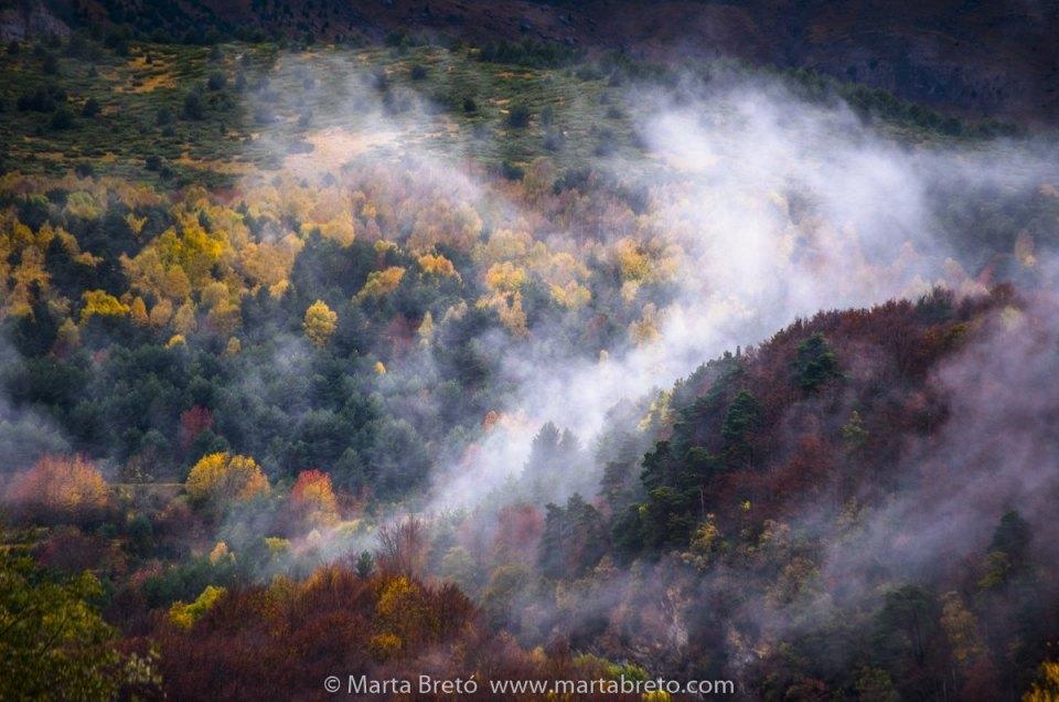 Phototrekking de otoño: Crónica y fotos