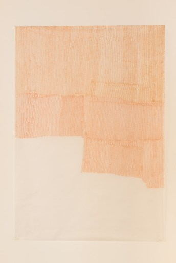 Sepia W, 2012 pen on tracing paper 158,5 x 110 cm