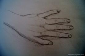 Studium dłoń 1