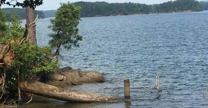 Lake Lanier Islands
