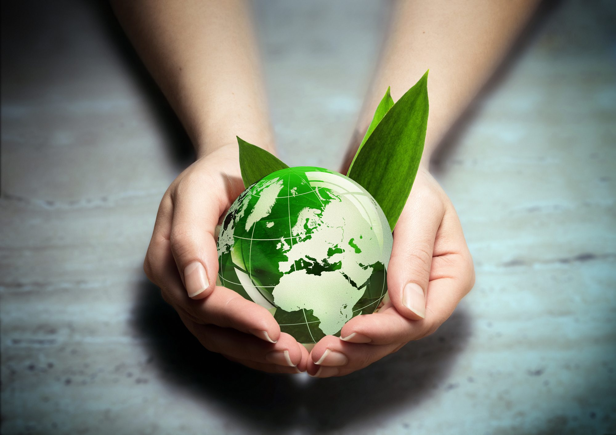 How Are You Marketing Your Brand's Sustainability and Diversity?