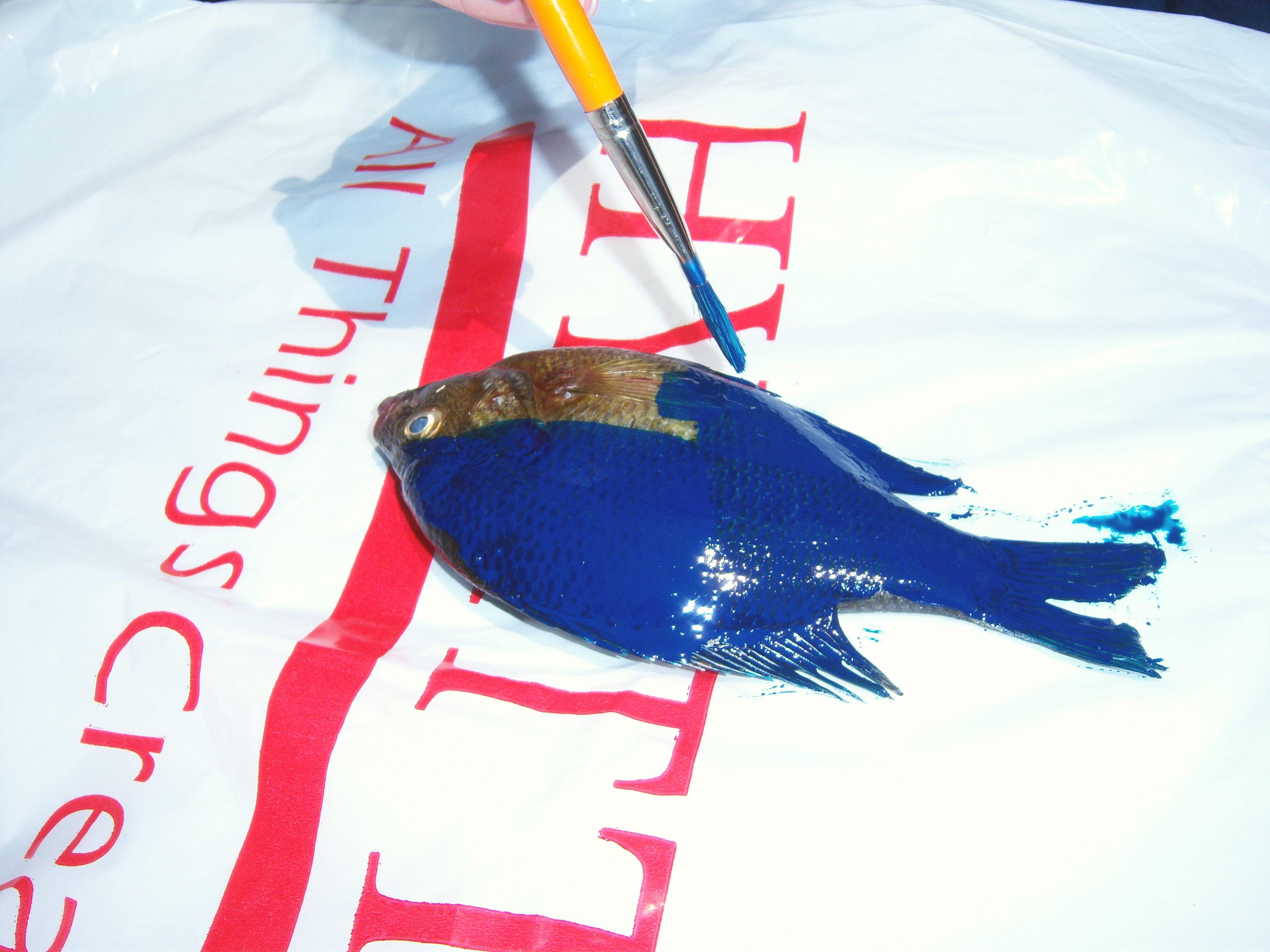 fish print2