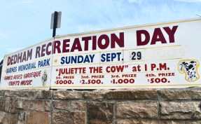 Signs surround Dedham Square as their annual recreation day approaches.