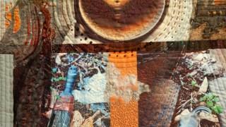 Jjill Kerttula, Blue Bush, detail