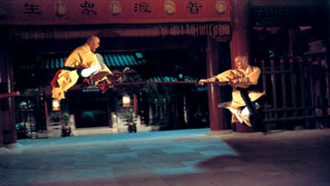 martial arts diagram wiring for car stereo toyota 8 pole fighter with gordon liu | action movies! arts, movies, dvd's ...