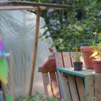 Jardins partagés et autogestion