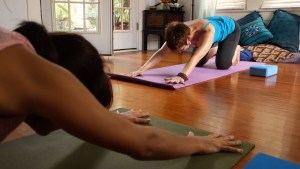 Book a Private yoga session with Marti Ewing 210-538-4910
