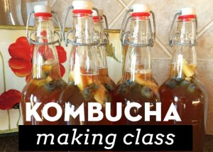 Kombucha making classes with Marti Ewing