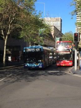 Sydney_Street_pic_6