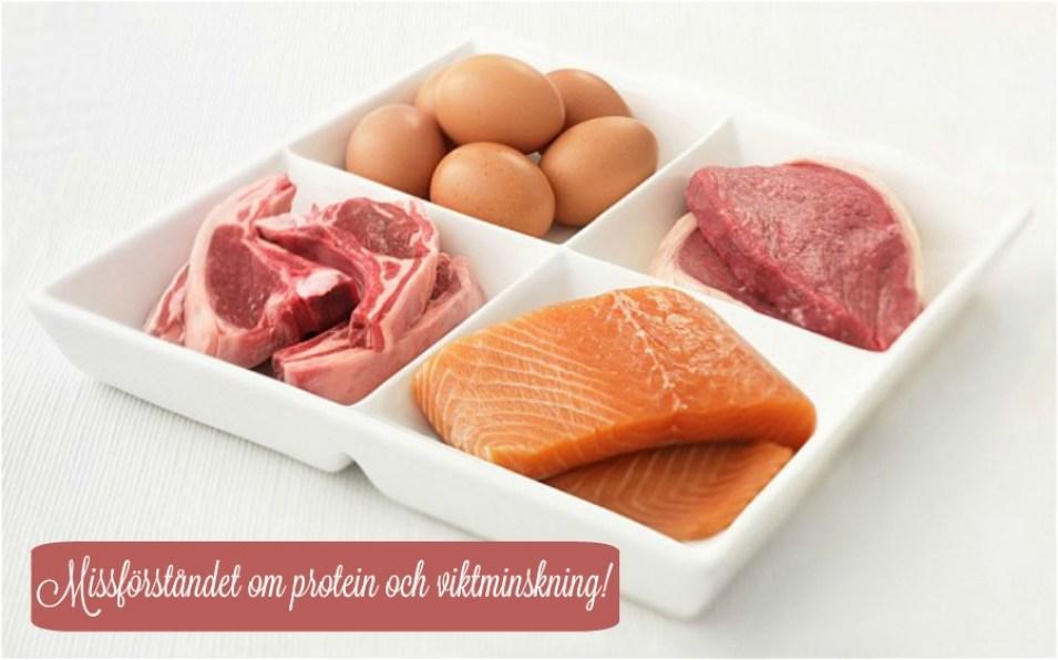 missförståndet om protein