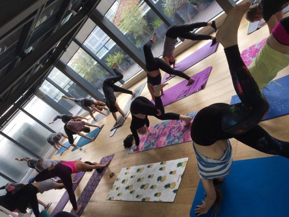 Yoga - Vad det egentligen handlar om - Next Level Biohacking ab67ba3b06fa7
