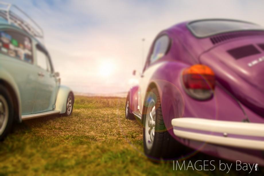 Image Volkswagen Beetles