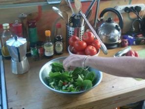 Salad from the Garden