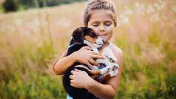 1576580731 adopci n ni a Consejos de adopción de mascotas según Mascota Planet
