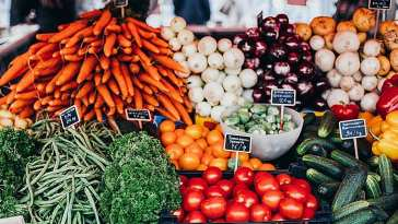 1588862489 dietamediterranea Mitos para adelgazar según Onet-Psicofertilidad