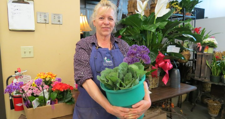 Established in 1934, Teefey Flowers Has Seen Many Changes