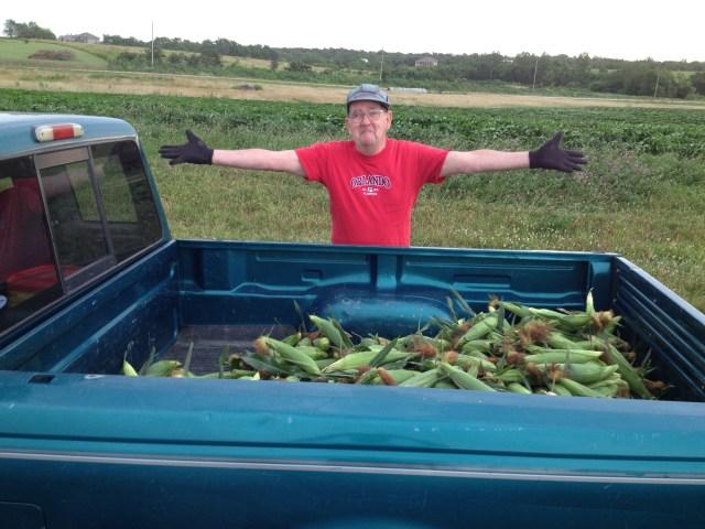 After the Harvest.jpg