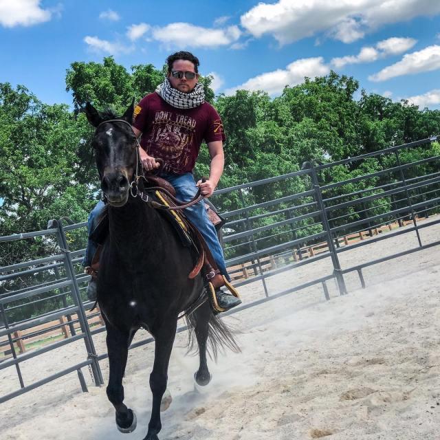 War Horses (1)