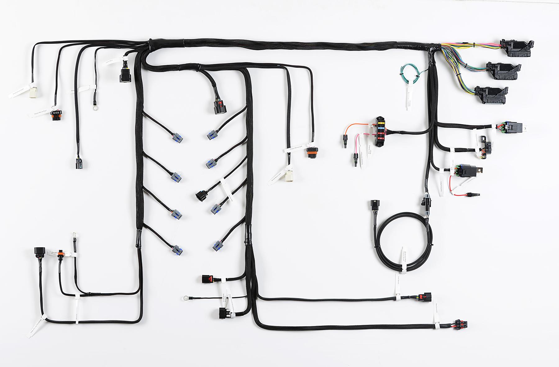 EcoTec Wiring Harness