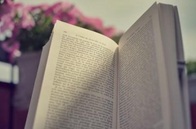 146_Dimanche de lecture