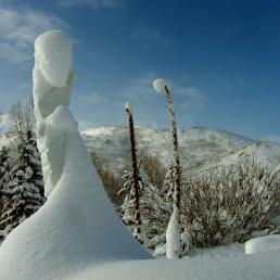 'Inner Strength', 1314 Winter Collection. Colorado Yule Marble Sculpture by MARTIN COONEY