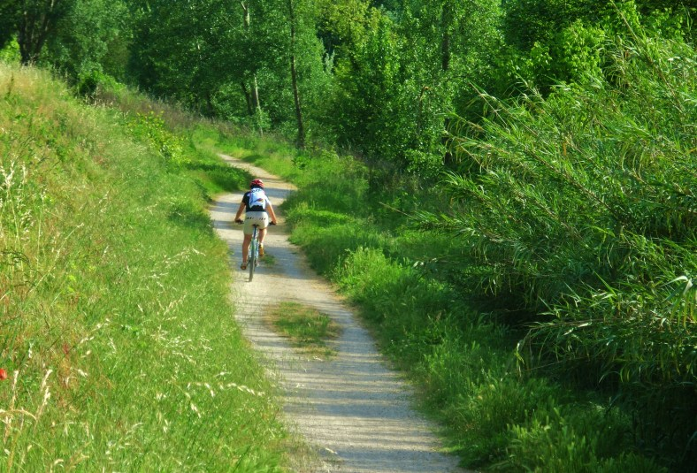 Bike Path, Countryside Around Lucca and Pisa, Ripafratta, Tuscany, Italy