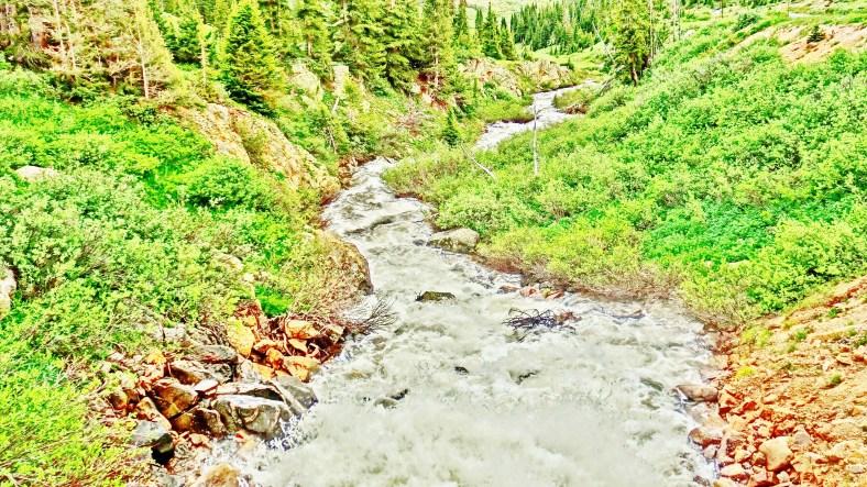 Roaring Fork River, Headwaters, Lost Man Trail.