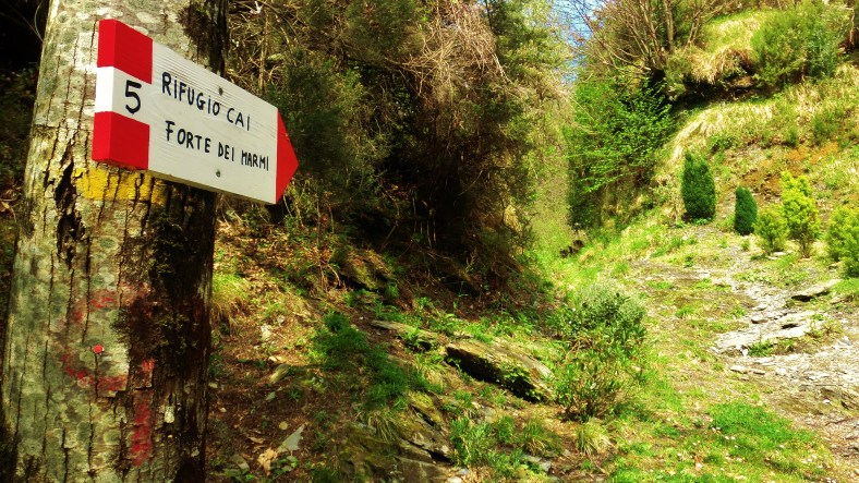 Trail Markers, Along the Path to Forte dei Marmi Hostel, The North West Tuscan Way, by Martin Cooney