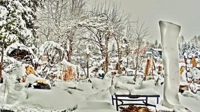 March 23, 2016. Thick snow blankets the sculpture garden.