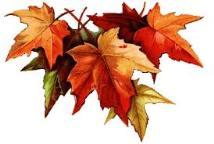 """""""Maple leaf"""" pour le poulet braisé"""
