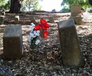Final resting places for Virginia Menezes-Costa, Aaron Rice, and Ralph Vestor Walker