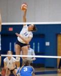 Alhambra Girls Volleyball vs Acalanes Dons Photos by Mark Fierner ( Martinez News-Gazette )