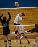 Alhambra Girls Volleyball vs Miramonte