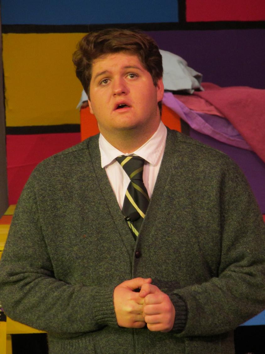 Lucas Haller as Mr. Harry MacAfee