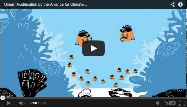 Ocean Acidification 2
